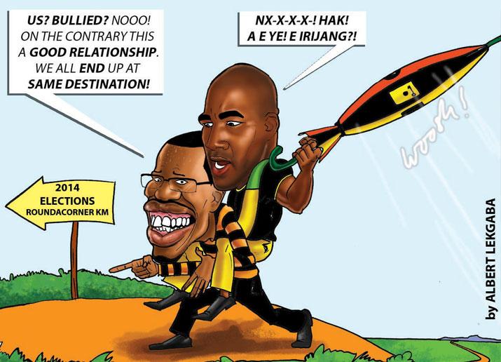 Albert Lekgaba - 2014 Elections