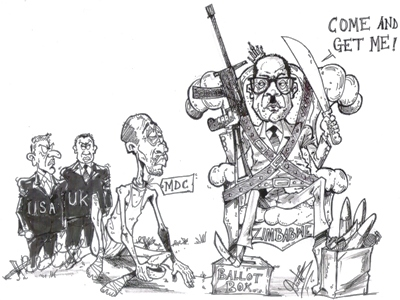 Dante Besong - Mugabe Taunts the World
