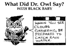 Harrison Jiedueh - what did Dr. Owl say