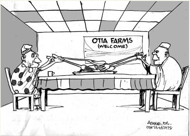 EB Asukwo- Otta Farms cartoon