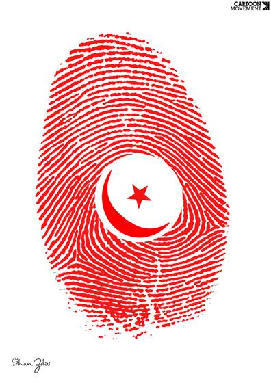 first_free_elections__siham_zebiri