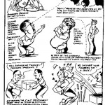 Fred Shilling - Parliamentary Cricket Simonstown cartoon